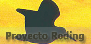 Proyecto Roding